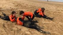Les nouveaux  nageurs sauveteurs de cet été sont prêts