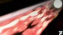 Ben 10 Ultimate Alien - 202 - Eye of the Beholder {C_P}