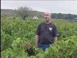 REPORTAGES : Vendanges, 3 questions à Raymond HOULES - 20 09 2006