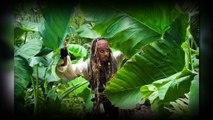 1 Jour 1 Film : Un jour, un film : Pirates des Caraibes 4