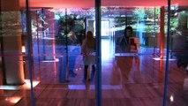 VUE D'ICI : Vue d'ici : Le génie du fada