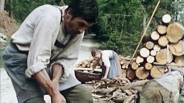 Waldheimat  S01E02