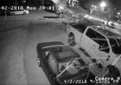 'Pollen Storm' Activates Security Camera in North Carolina