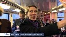 Grève SNCF : En colère, des voyageurs entrent dans le train par la fenêtre (Vidéo)