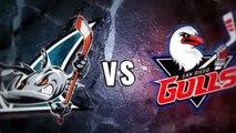AHL San Diego Gulls 0 at San Jose Barracuda 4