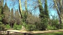 My Provence BELLES ROUTES : Belles routes 03 06 15 - Aix/La Sainte Victoire 1/2