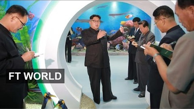 North Koreans' world views   FT World