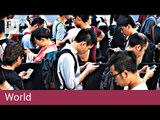 Apple removes VPN apps in China | World