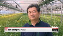 Exports of Korean flowers surge on improved seed quality