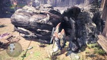 Monster Hunter: World Down the Dark, Muddy Path A Rank