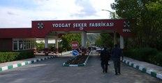 Çorum Şeker Fabrikasını Safi, Yozgat Şeker Fabrikasını Doğuş Aldı