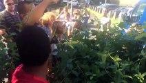 Les deux manifestants placés en garde à vue suite aux dégradations de restaurants de plage sont arrivés au tribunal de Champ Fleuri. Une trentaine de militants
