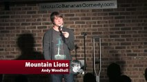 Mountain Lions - Andy Woodhull