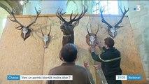 Vers un permis de chasse deux fois moins cher