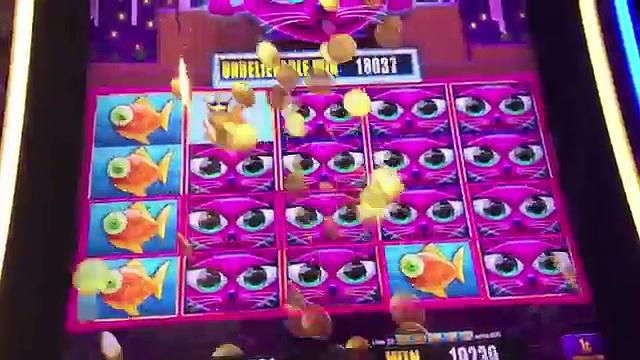 Miss Kitty Gold Slot Machine Bonus- with Rex
