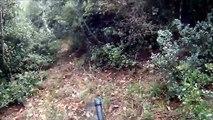 Κυνήγι Αγριογούρουνου (επιθεση καπρου) Κωνσταντός- Wild Boar Hunting (Boar Attack) 1:44 The Attack