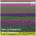 Les tulipes sont en fleurs en Provence. Un spectacle de printemps
