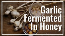 How To Make Garlic Fermented In Honey    Le Gourmet TV Recipes