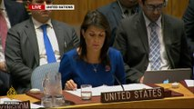 Syria strikes:UN Security Council meeting - United States