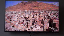 Testing vertical lines in Sony Bravia tv  - video dailymotion