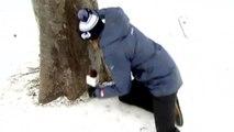En direct cette journaliste chute sur la glace en plein direct !