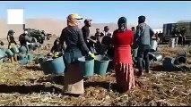 Mevsimlik tarım işçilerinin eve dönüş mutluluğu
