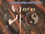 Jun Fan Jeet Kun Do - Entrainement sur le mannequin de bois