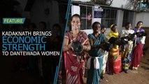 Kadaknath becomes a new source of livelihood for Dantewada women