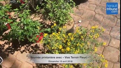 VIAS - Journée printanière avec « Vias Terroir Fleuri » !