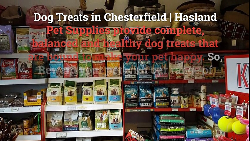 Dog Treats Chesterfield