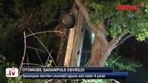 Şarampole devrilen otomobil ağaçta asılı kaldı  4 yaralı