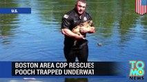 Oficial de policía rescata perro atrapado en un auto que termino sumergido en un lago
