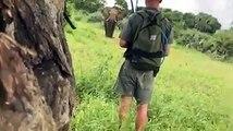 La grosse frayeur de touristes qui voient un éléphant les charger !