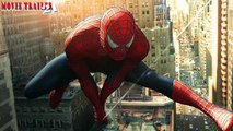 Top 10 Highest Grossing Solo Superhero Movies At The Domestic Box Office, Ranked
