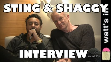Sting & Shaggy : Don't Make Me Wait Interview Exclu