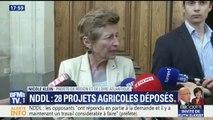 """NDDL : """"Il y a 7 projets agricoles qui nous paraissent sans problèmes"""", dit la préfète de Loire-Atlantique Nicole Klein"""