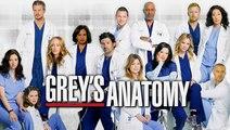Greys Anatomy Season 14 Episode 20 Streaming HD