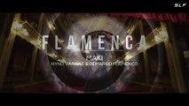 Demarco Flamenco Feat Nyno Vargas & Maki Flamenca (EXTD Antonio Colaña & Pedro Cárdenas 2018).SLF video remix