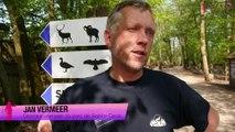 Parc de Sainte-Croix : arrivée des élans et nouvel espace pour les bisons