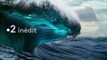 Revoir Planète bleue - Voyage au coeur des océans Replay