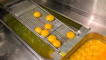 10 Innovative Commercial Kitchen Tools and Kitchen Gadgets Live Test