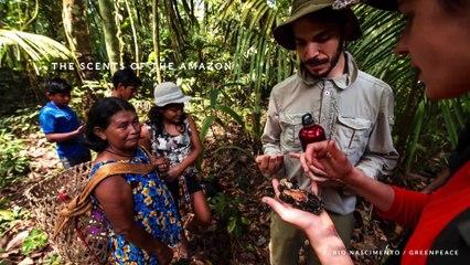 Munduruku : une expérience multisensorielle - Keynote VA