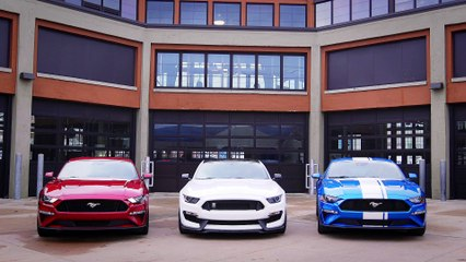Mustang DNA of Sound