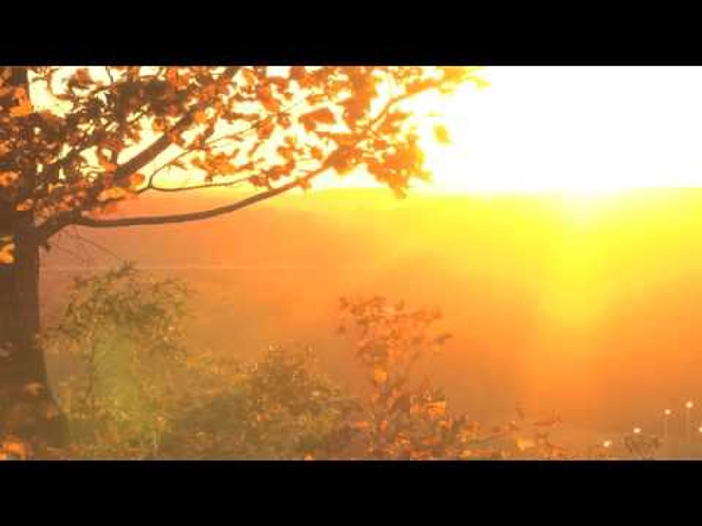 Best Relaxing Flute Music with Nature Sound, Reiki Zen Music, Morning Meditation Music ♫♫♫