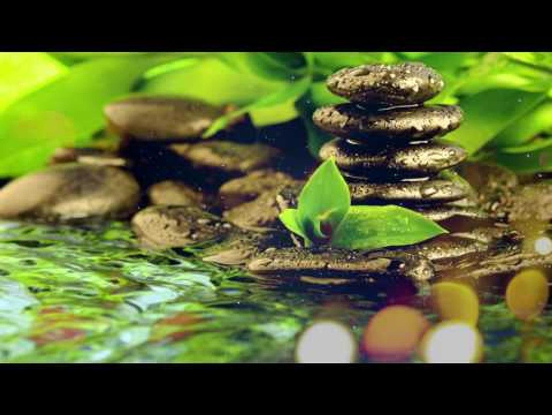 Zen Music - Stress Relief Music, Spiritual Music, Meditation, Anti - Stress, Positive Energy Music