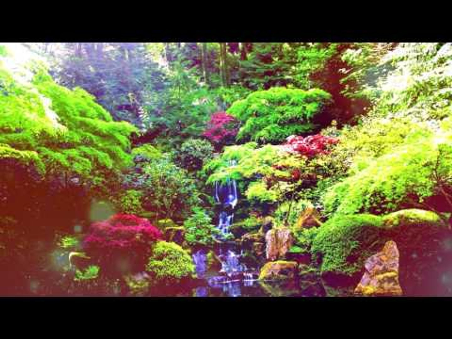 Relaxing Soothing Music - Inner Peace, Forest Relax Music, Meditation Music, Nature Sounds