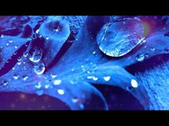 Relax Meditation Music: Relaxation Music, Soothing Music, Calming Music, Yoga Music, Healing Music