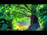 30 Mins Relaxing Music Therapy, Soft Music, Relaxing Nature Scenes - Relaxing Music - Nature Scenes