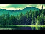 30 Minute Relaxation Flute Music, Soft Music, Chillout Calming Music, Relax Spa Water Sounds