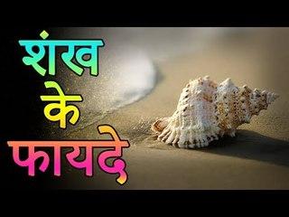 चमत्कारी शंख से जल्दी बने धनवान | शंख बजाने या घर में रखने के फायदे | Adbhut Kahaniyan